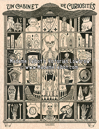 Curiosity Cabinet Glow in the Dark Skull Poster