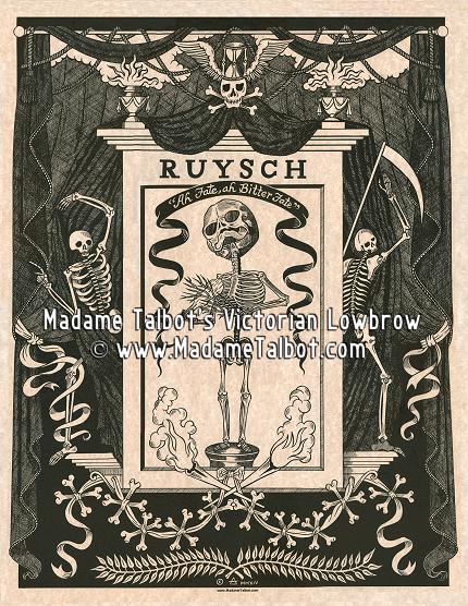 Frederik Ruysch Anatomy Poster