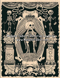 Victorian Anatomical Museum Poster